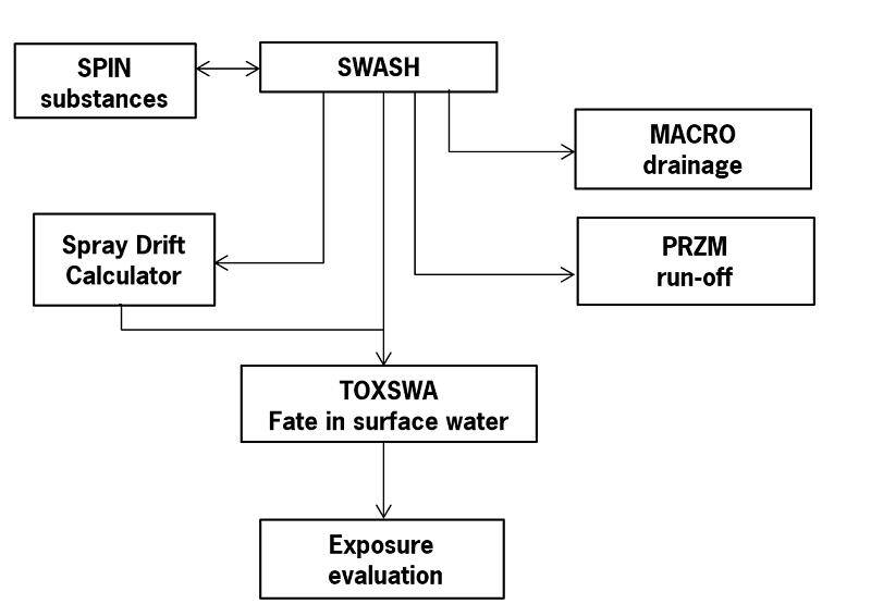 scheme SWASH.jpg
